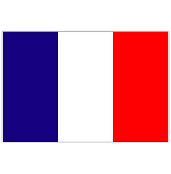 french flag intersystem