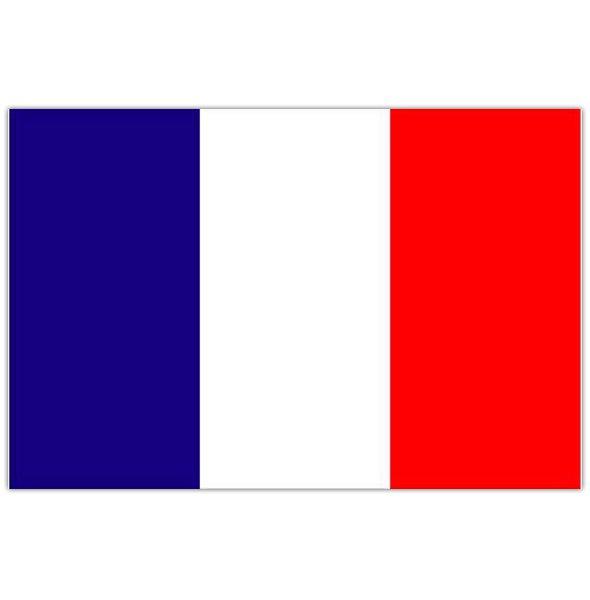 french flag intersystem